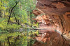 Oak Creek Canyon near Sedona