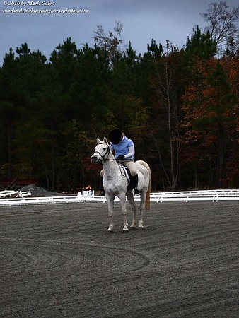 11-6-2010 Dressage At Fenridge