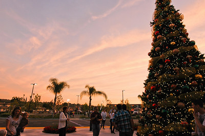 Christmas Blvd