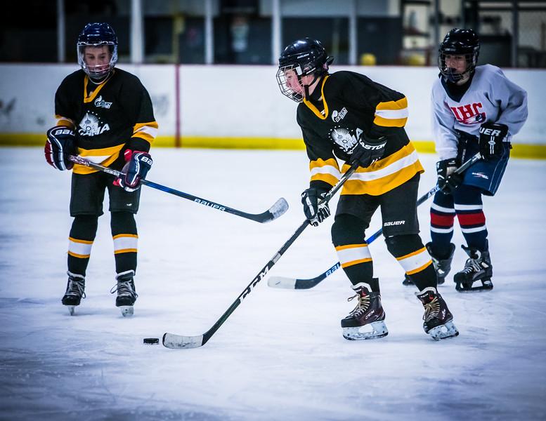 Bruins2-122.jpg