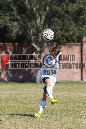 Boys Varsity Soccer - 2013