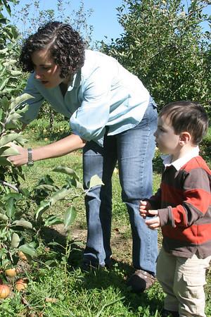 Hendersonville Apple Picking