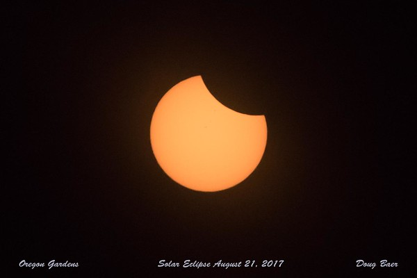 Solar Eclipse 2017 - Totality at Oregon Gardens
