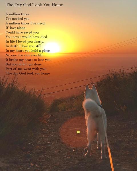 Roscoe Poem 2.jpg