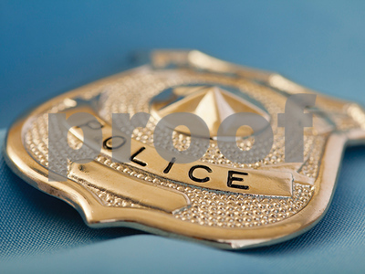 dallas-chief-plans-cut-command-staff-to-increase-patrol-units-in-city