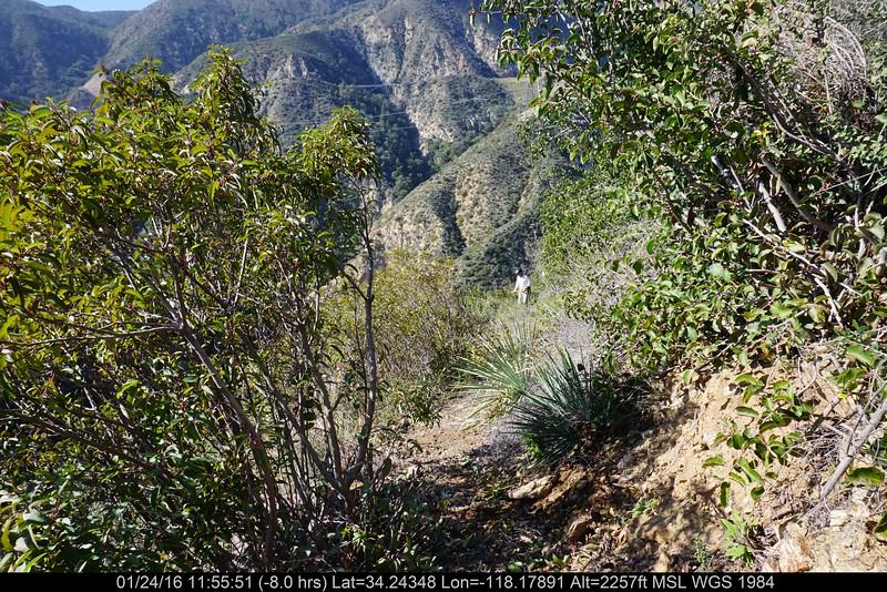 20160124010-Ken Burton Trailwork.JPG