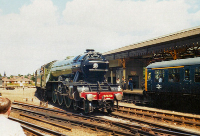 Flying Scotsman (Preserved)