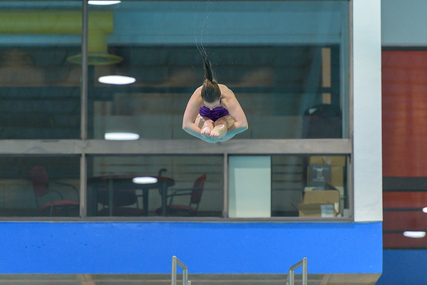 Saturday Diving - Finals Session