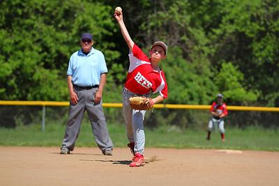 Bees Baseball 11U - 2014