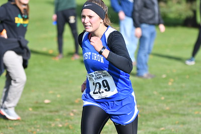 D2 Girls - 2019 MHSAA UP XC Finals