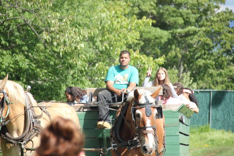 kars4kids_thezone_camp_girlsDivsion_activities_Horse&Buggy (21).JPG