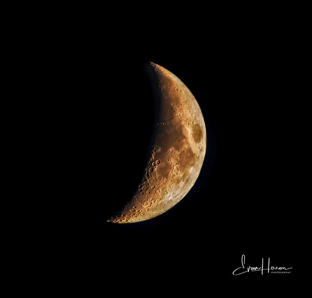 Moon 4 lg-1.jpg