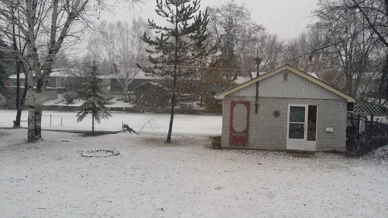 2. Its Snowing.jpg