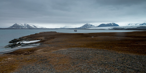 The Nature of Svalbard - Spitsbergen