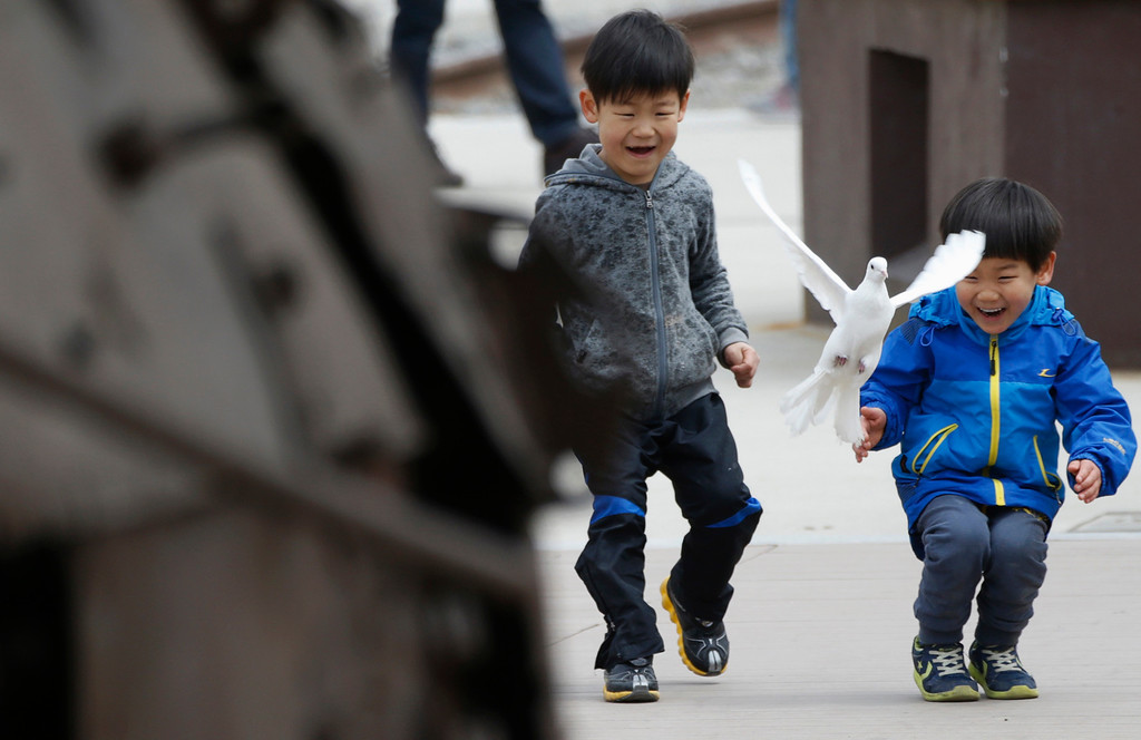 . South Korean boys look at a dove flying near the demilitarized zone separating North Korea from South Korea in Paju, north of Seoul April 15, 2013. North Korea celebrated the 101st anniversary of its founder\'s birth with flowers on Monday, although there was no sign of tension easing as South Korea warned that the North\'s survival could be in question without change and development. REUTERS/Lee Jae-Won