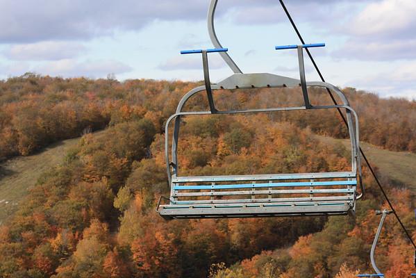 Fall Colours - 2009