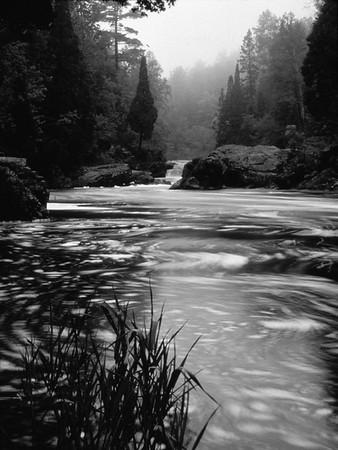 baptism_river_1980s_7_modebw.jpg