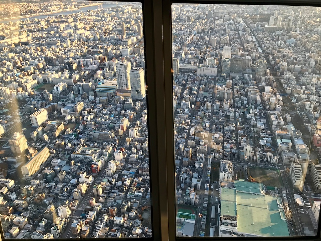 Tokyo's topography through the glass.