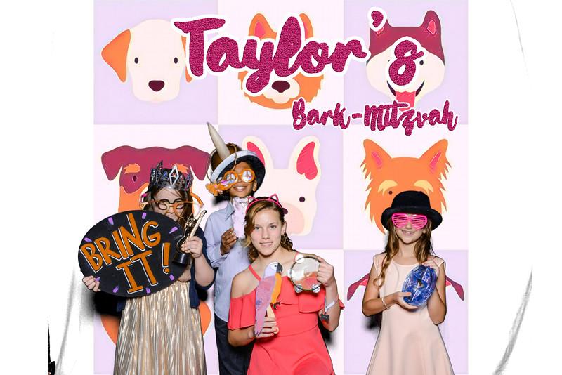 Taylors pawmitzvah-20775.jpg