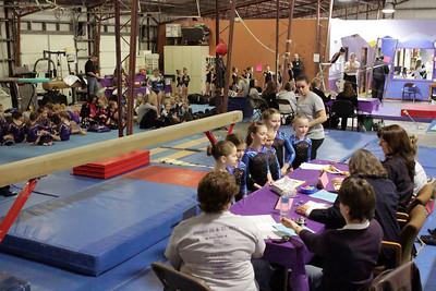 Falcon Gymnastics : Session 2 : Level 4