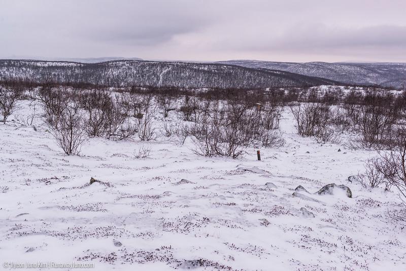 Nov.11_Utsjoki-6105837.jpg