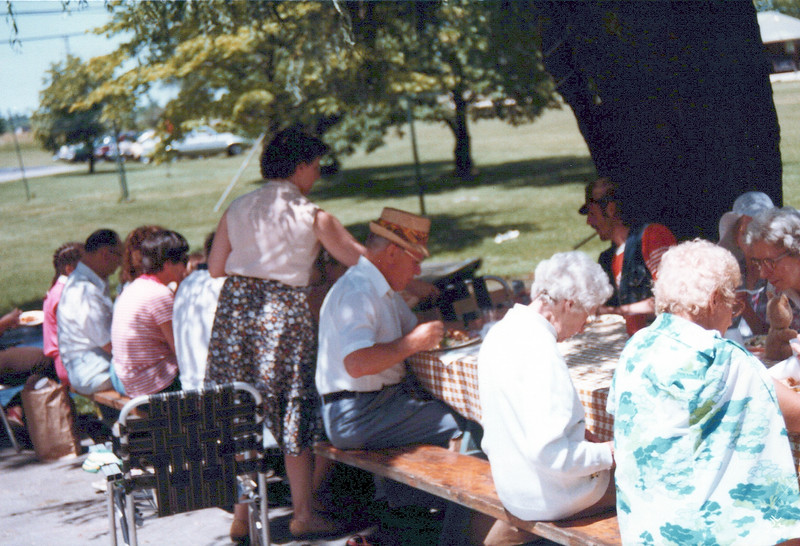1983 picnic at house.jpeg