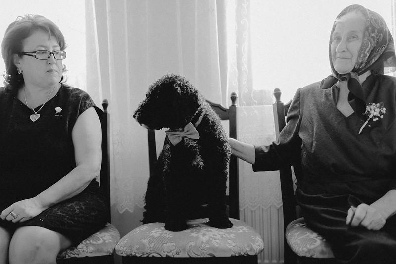 Fotograf nunta Sibiu-16.jpg