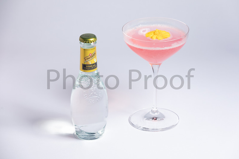 BIRDSONG Schweppes Cocktails 093.jpg