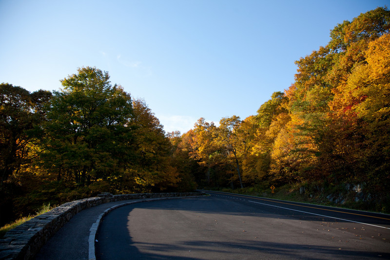 Fall color around mile marker 40.