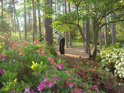 Golf Trip 2010