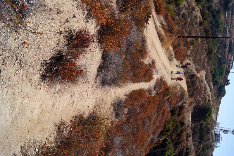 20110911046-Eagle Scout Project, Steven Ayoob, Verdugo Peak.JPG