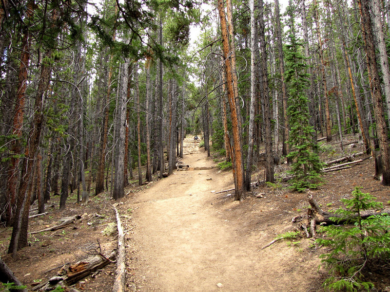 Mt Elbert 7-17-2010 (101).jpg