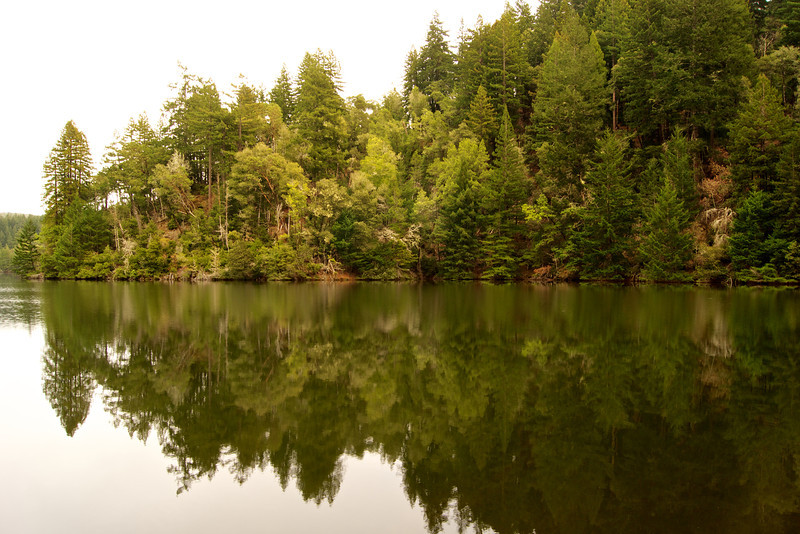 Alpine Lake, Fairfax, CA ref: 78f86ff8-8499-46f5-a1e2-8b744dc9ee41