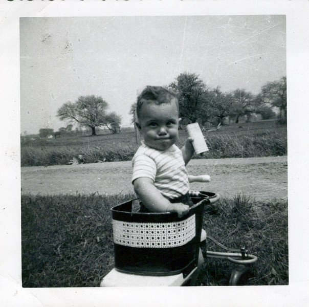 1950 Butch in carriage.jpeg