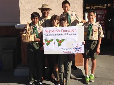 20141213 Mistletoe Donation Stand