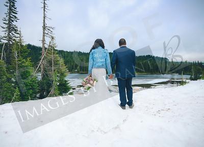 yelm_wedding_photographer_Akins_700_DS8_7509