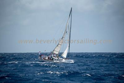 ZEPHIA under sail