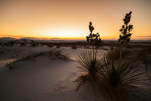 Whitesands NM, Jun 2014