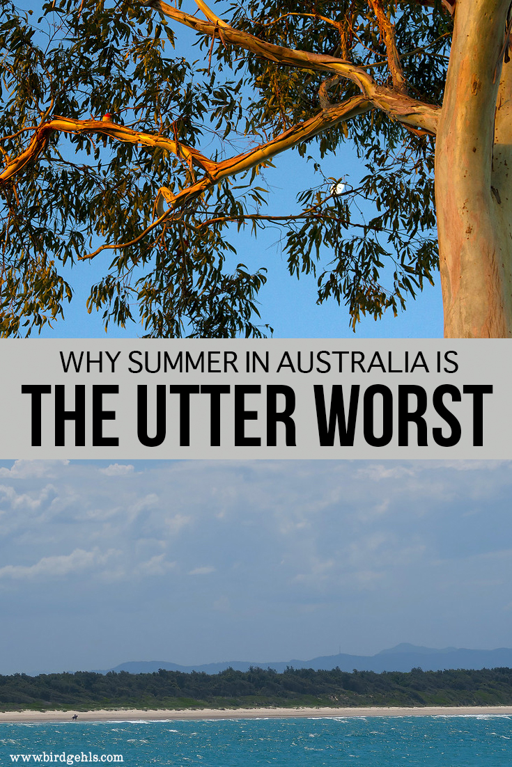 Is summer the best time to visit the Land Down Under? Ah, maybe if you like sweating puddles, enjoy being harassed by bugs of all descriptions and are made of money. Here are a few reasons why summer is the worst time to visit Australia - come visit any other time of the year, for your own sanity's sake. #Australia #Travel #Summer #TravelTips