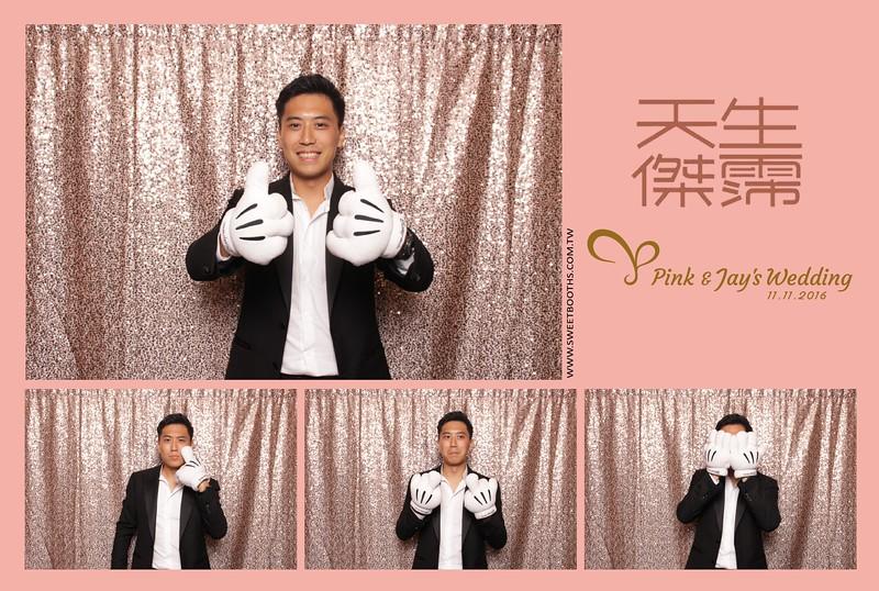 Pink.Jay (109).jpg