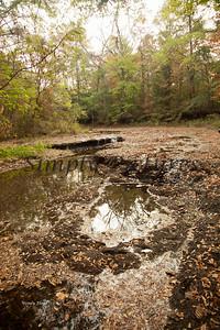 Banita Creek080