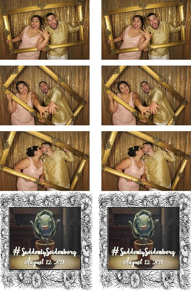 Seidenberg Wedding - 8.12.17 - Photo Strips