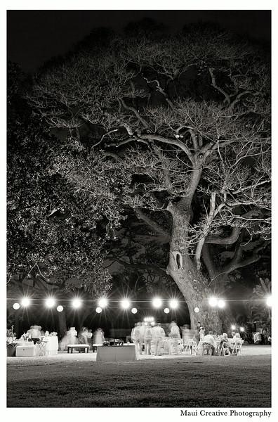 Maui_Wedding_Photographers_Olowalu_Plantation_House_547.jpg