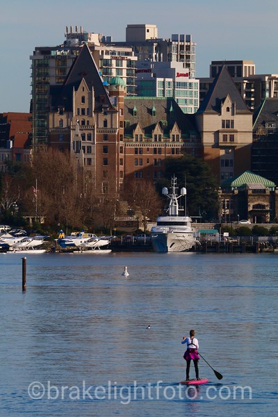 SUP in inner Harbour