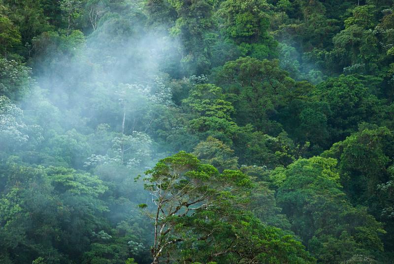Costa Rica (100 of 104)
