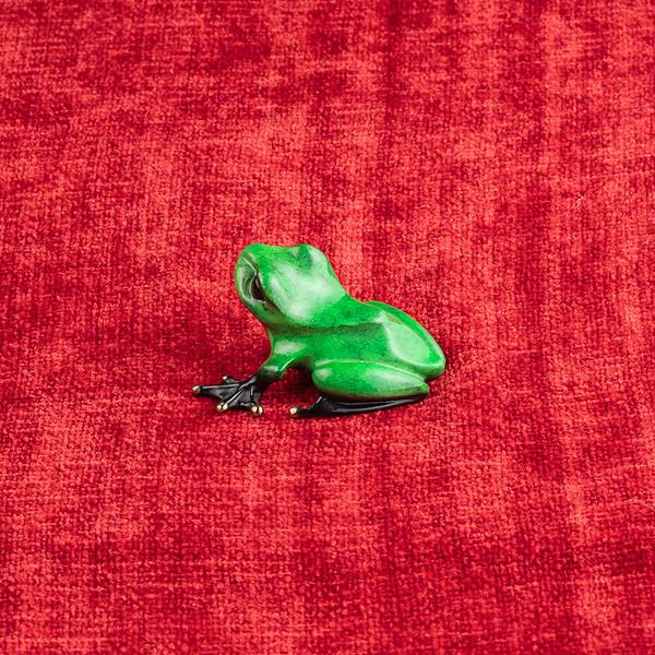 Frog-3601.jpg