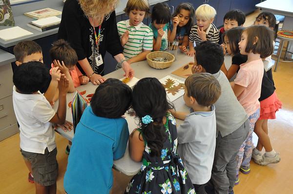 Kindergarten Artists