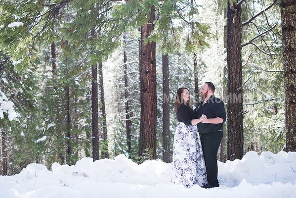 Brittany and Dan: Pollock Pines