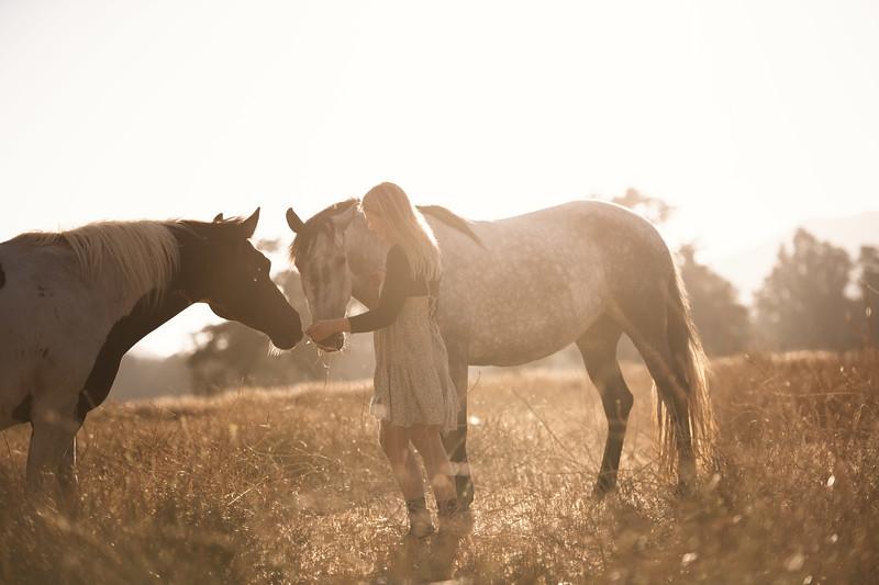 Mosie Last Days on the Ranch