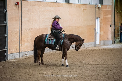 Novice Horse classes 601-604